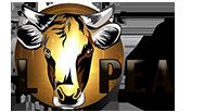 Association L-PEA